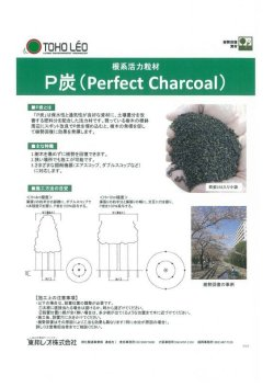 画像1: P炭 カタログ