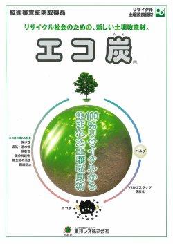 画像1: エコ炭 カタログ [九州限定商品]